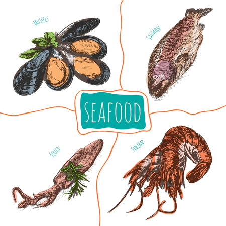 Vector illustration colorful set with seafood. Different kinds of seafood on white background Illustration