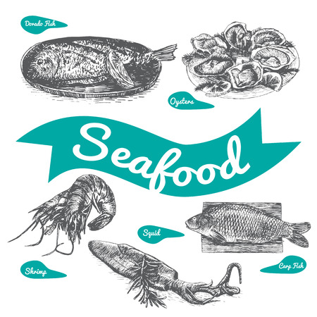 dorado: Vector illustration black and white set with seafood. Different kinds of seafood on white background
