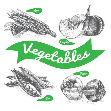 garden peas: Vector illustration black and white set with vegetables. Different sort of vegetables on white background