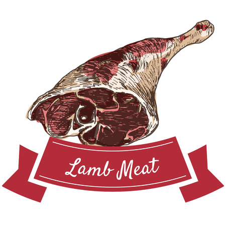 preparations: Lamb meat colorful illustration. Vector illustration of lamb meat.