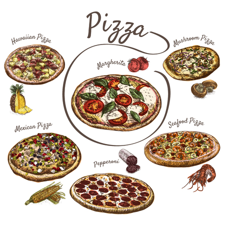 Illustration of various sort of pizzas. Colorful illustration of pizzas