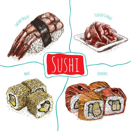 exotica: Illustration of various sort of sushi. Colorful illustration of sushi