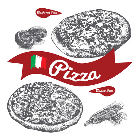 Mushrooms and Mexican pizzas illustration. Vector illustration of pizzas Illustration