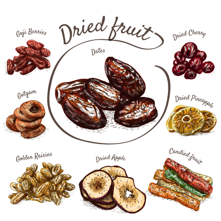 Dried fruits colorful illustration. Vector colorful illustration of dried fruits Vetores