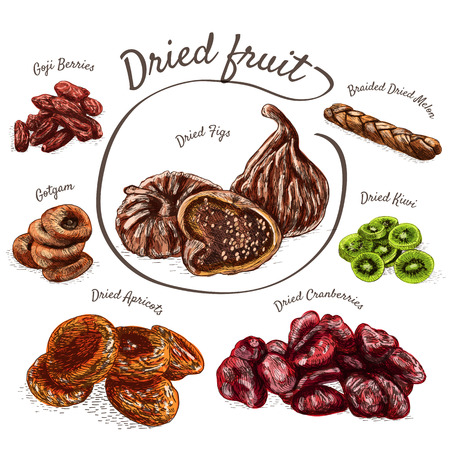 persimmon: Dried fruits colorful illustration. Vector colorful illustration of dried fruits