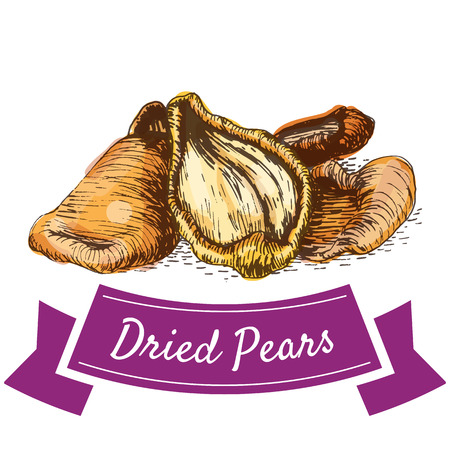 pears: Dried pears colorful illustration. Vector illustration of dried pears.