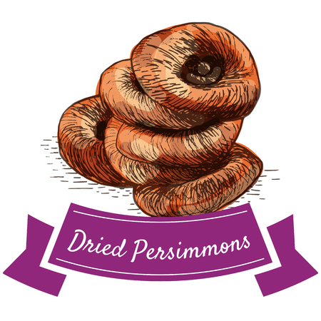 Dried persimmons colorful illustration. Vector illustration of dried persimmons. Illustration