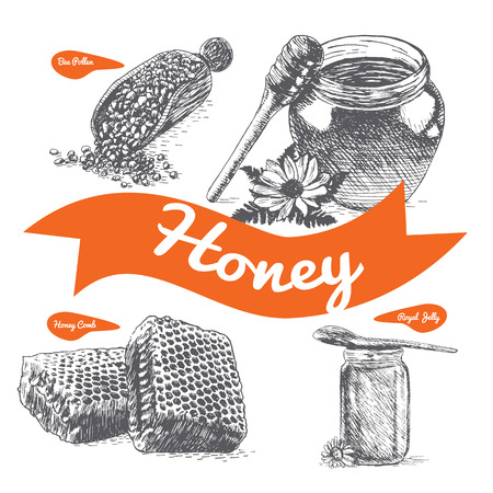Royal jelly, bee pollen, honey comb and honey illustration. Vector illustration of honey
