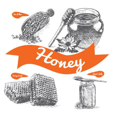 Royal jelly, bee pollen, honey comb and honey illustration. Vector illustration of honey