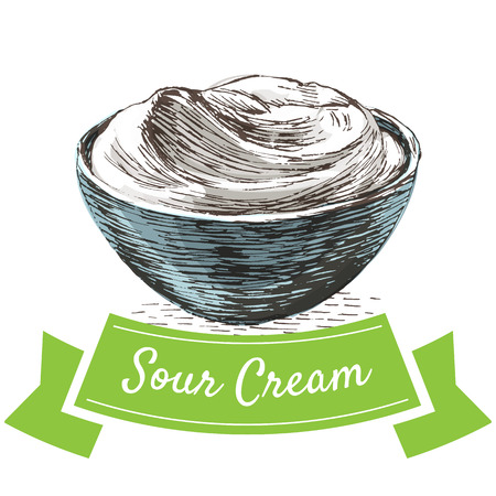 sour: Sour cream colorful illustration. Vector illustration of breakfast. Illustration