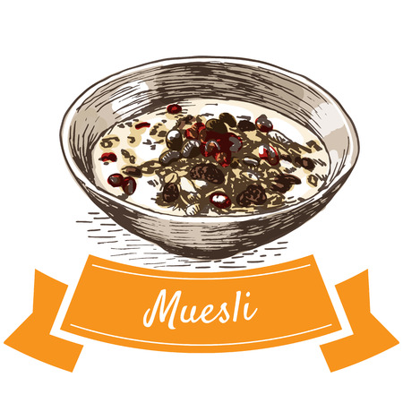 Muesli colorful illustration. Vector illustration of breakfast.