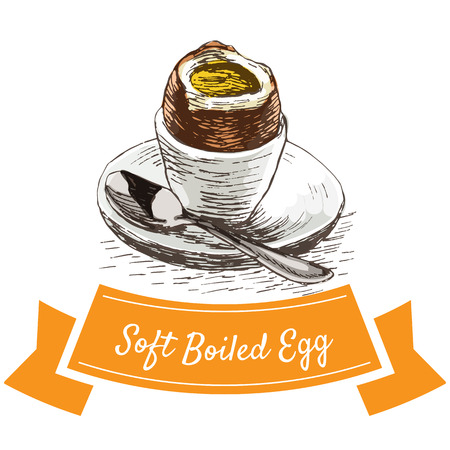 broken eggs: Soft boiled egg colorful illustration. Vector illustration of breakfast.