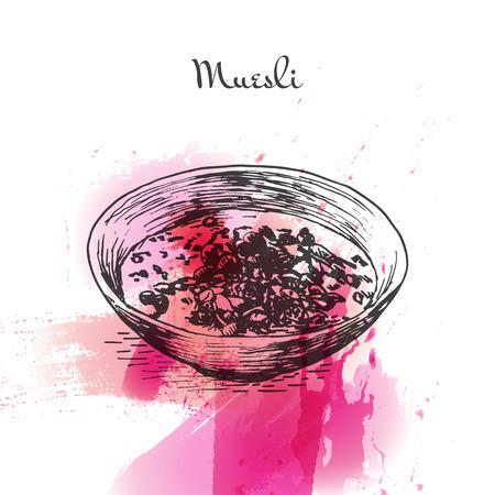 coloré Muesli effet d'aquarelle illustration. Vector illustration du petit-déjeuner.