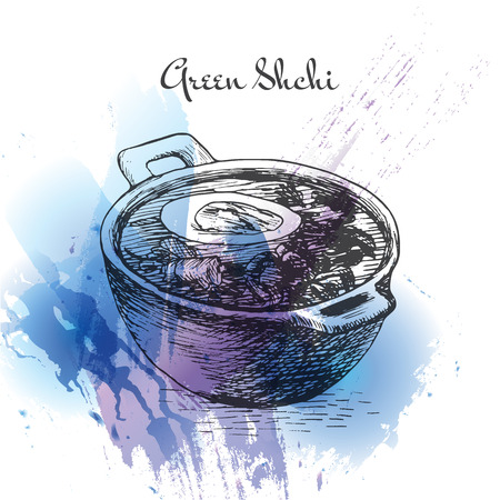 Green shchi watercolor effect illustration. Vector illustration of Russian cuisine.