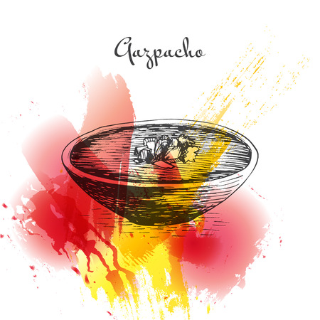 Gazpacho colorful watercolor effect illustration. Vector illustration of Spanish cuisine. Illustration