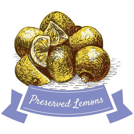 preserved: Preserved Lemons colorful illustration. Vector illustration of israeli cuisine. Illustration