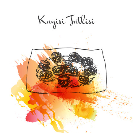 mediterranean diet: Kayisi Tatlisi watercolor effect illustration. Vector illustration of Turkish cuisine.