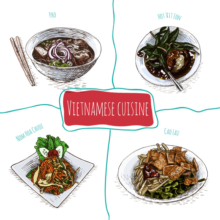 Vietnamese menu colorful illustration. Vector illustration of Vietnamese cuisine.