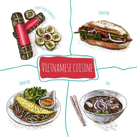 favorite soup: Vietnamese menu colorful illustration. Vector illustration of Vietnamese cuisine.