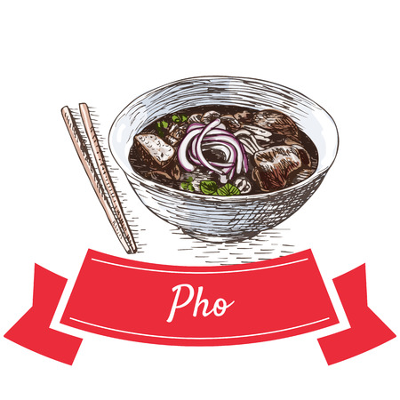 broth: Pho colorful illustration. Vector illustration of Vietnamese cuisine. Illustration