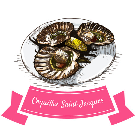 saint jacques: Coquilles Saint Jacques colorful illustration. Vector illustration of French cuisine.