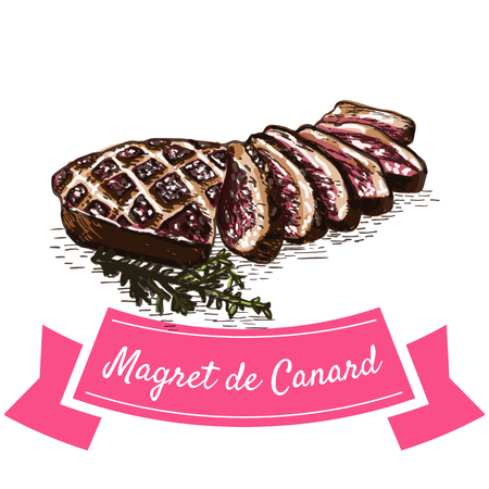 Magret de Canard colorful illustration. Vector illustration of French cuisine.
