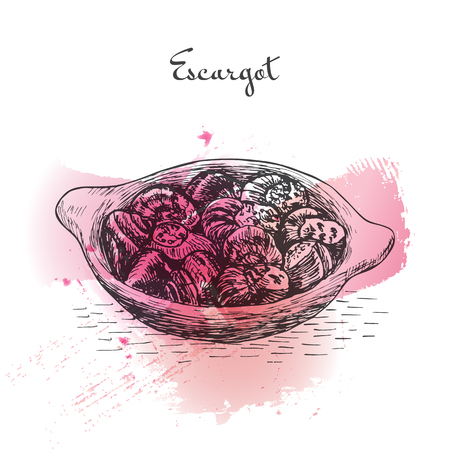 Escargot watercolor effect illustration. Vector illustration of French cuisine.