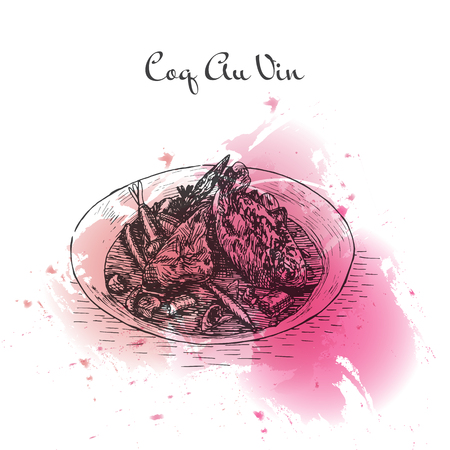 Coq au Vin watercolor effect illustration. Vector illustration of French cuisine.