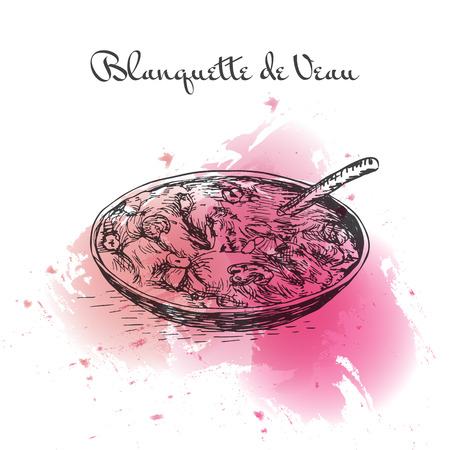 Illustration de l'effet aquarelle Blanquette de Veau. Illustration vectorielle de la cuisine française.