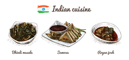 Indian menu colorful illustration. Vector illustration of Indian cuisine.