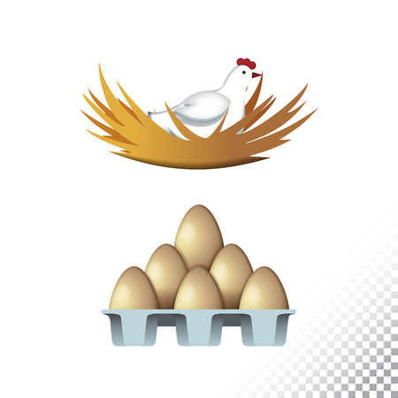 Vector flat icon illustration of hen and eggs. Colorful objects on a transparent background.  イラスト・ベクター素材