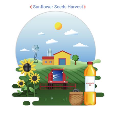 Flat farm landscape illustration of sunflower seeds harvest. Rural landscape with sunflower field and harvester.