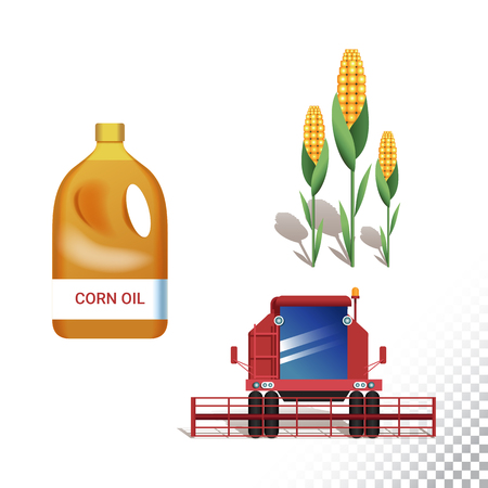 Vector flat icon illustration of corn are, harvested and corn oil. Colorful objects on a transparent background.