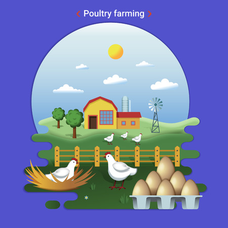 Flat farm landscape illustration of poultry farming. Rural landscape with grassland and Countryside House. Hens graze and hatch eggs. Фото со стока - 112852067