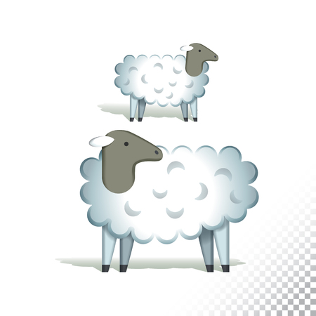 Vector flat icon illustration of sheeps. Colorful objects on a transparent background.