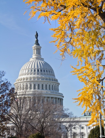 US Capitol Building, in Fall, Washington DC, USA photo