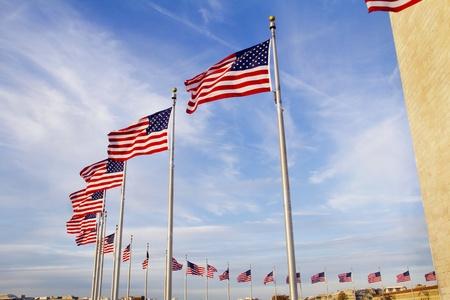 US flags near Washington Monument, Washington DC  photo