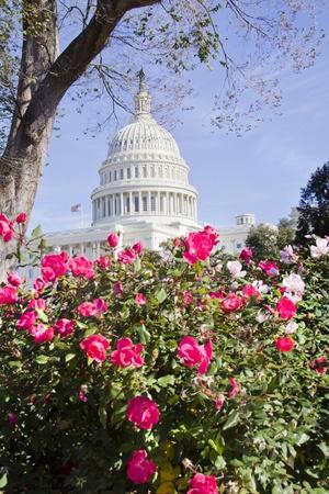 US Capitol Building, Washington DC Stock Photo - 13308560