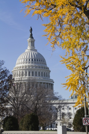 US Capitol Building, Washington, DC, US Congress, It is at the east end of the National Mall  photo