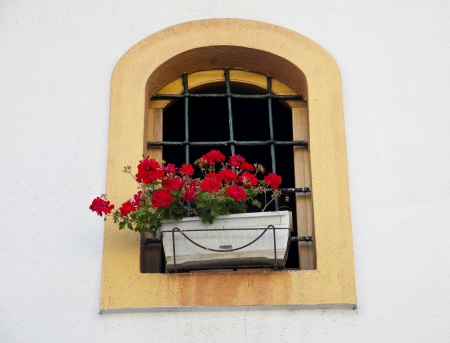 Window Closed with bars, Decorated With Fresh Flowers  photo