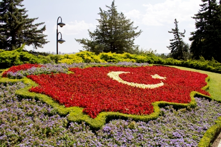 Turkish flag made of flower arrangement of map of Turkey Stock Photo
