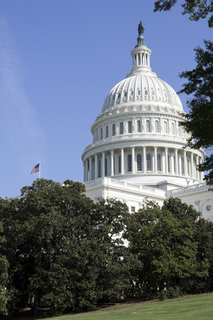 lobbyists: Washington DC , Capitol, US