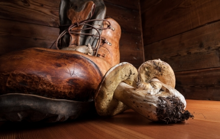 mountainy: Porcini mushrooms on a wooden cutting board with a boot carved