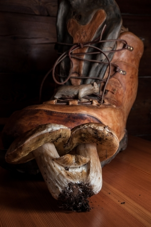 Porcini mushrooms on a wooden cutting board with a boot carved Stock Photo - 16719335