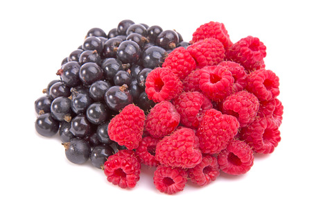 Black currants and raspberries isolated on white background photo