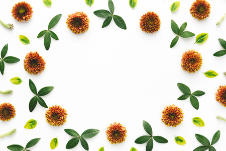 Orange flowers and green leaves frame on white background. Stock Photo