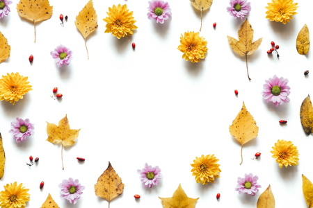 Autumn pattern with yellow leaves and colorful daisy flowers on white background.