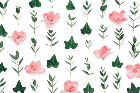 Spring pattern made of soft pink azalea flowers and green leaves on white background. View from above. Copy space. Stock Photo