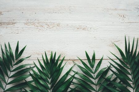 Dark green tropical leaves on white wooden background. Flat lay. copy space. Banque d'images - 142149121