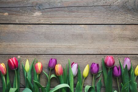 Spring (Easter) background: Colorful tulips on wooden planks. Copy space. View from above. Flat lay. Banque d'images - 142149111
